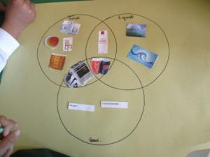 All of the solids, liquids and gases were sorted correctly into the Venn diagram.
